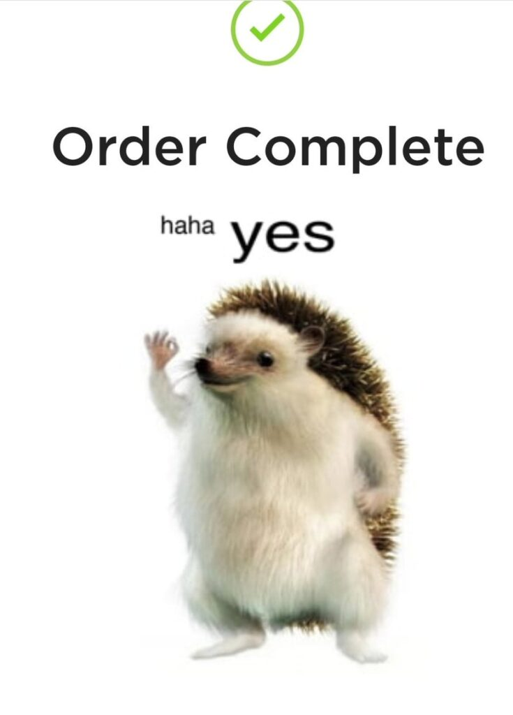 The tesla hedgehog giving the OK sign after you order your tesla